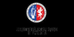 Università degli Studi di Perugia logo